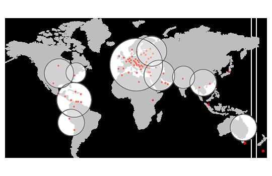 Disegno global